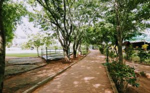 Green-Bicycle-Trails-Olde-bangalore-1